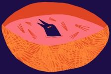 Ailsa-Johnson-Illustration-It'sNiceThat-2
